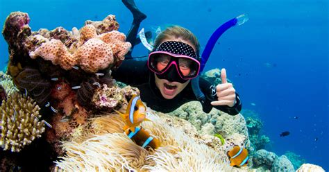 Great Barrier Reef: Diving and Snorkeling from Port Douglas